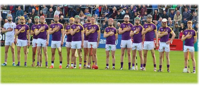 Wexford Hurling Team